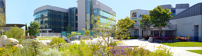 Gainful Employment San Diego Mesa College