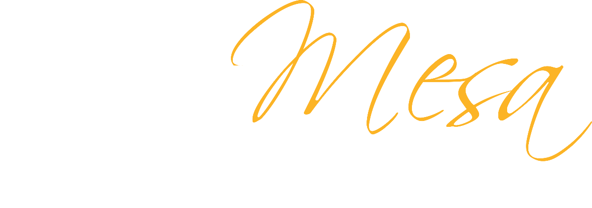 we are mesa the leading college of equity and excellence